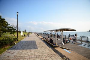 西 駐 車場 公園 東扇島