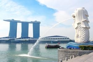 シンガポール 公 用語