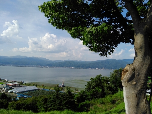 サービス エリア 湖 諏訪