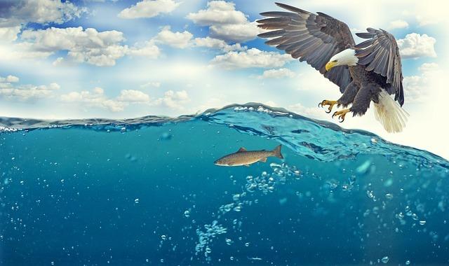 ワインド釣法でタチウオを釣るには?基本の動きのコツなど釣り方をご紹介!