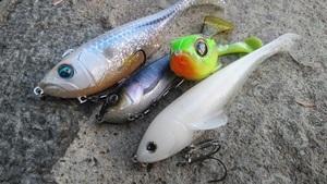 スイムベイトは初心者でも釣れるスゴイルアー!使い所や釣り方をご紹介!
