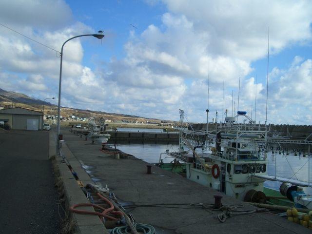 静浦港は釣り禁止?周辺の釣りポイントや釣れる魚をご紹介!