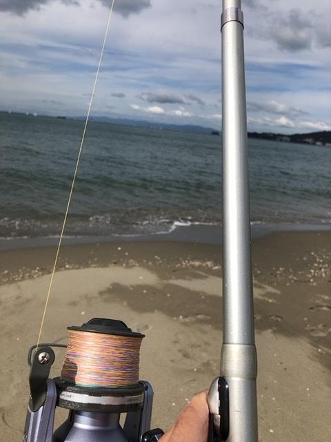 カレイの釣り方の基本を解説!仕掛けやタックル、釣り方のポイントは?