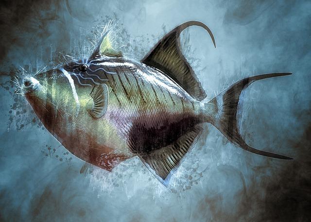 カワハギ釣りの基本になる釣り方をご紹介!おすすめの仕掛けやタックルは?