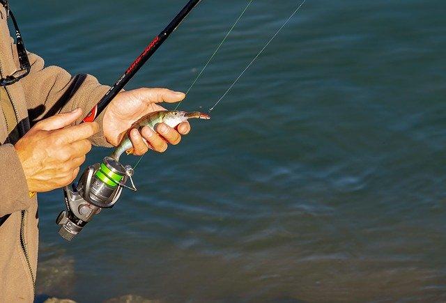 リヴァスポット早戸を攻略する方法は?釣り方のポイントを解説!