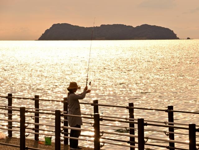 サッパってどんな魚?釣り方からおいしい食べ方まで徹底解説!