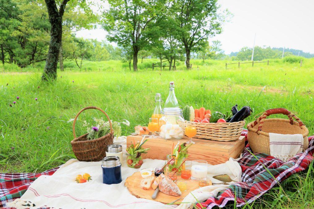 東京都内近郊のおすすめピクニックスポット15選!穴場の室内情報もご紹介! | 暮らし〜の
