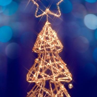 千葉のイルミネーションスポット特集!クリスマスデートならここ!【2019年】