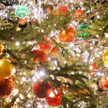 ニトリのクリスマスツリーの口コミは?値段はどれくらい?