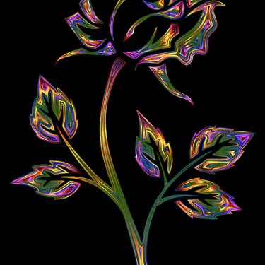 レインボーローズの花言葉は奇跡!虹色のバラの作り方も解説!