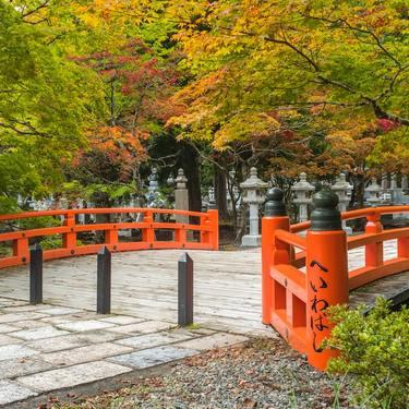 和歌山といえば?思い浮かぶ観光・グルメなど有名なものランキング