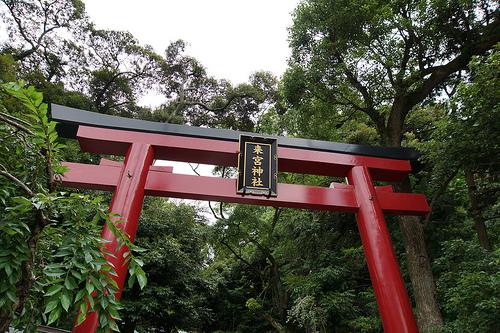 熱海温泉街から足を延ばして訪れたい【來宮神社】