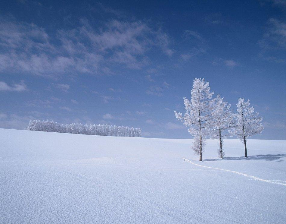 北海道・冬の観光スポット11選!モデルコースあり!おすすめの絶景は?