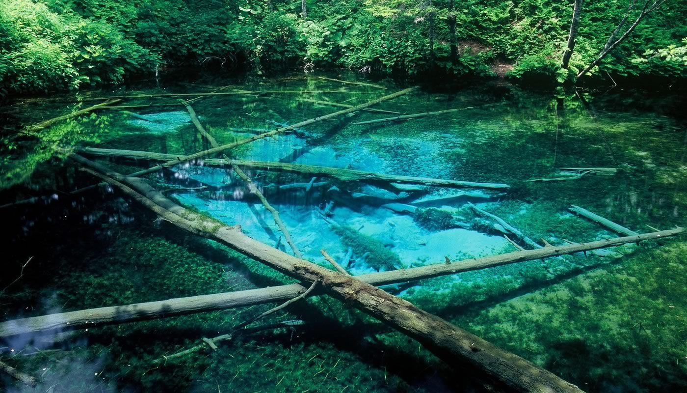「神の子池」の青さが神秘的!怖い?アクセス方法は?北海道のパワースポット!