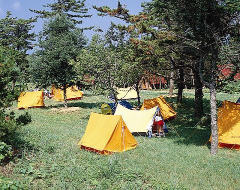 青森のキャンプ場おすすめランキングTOP9!子供に人気の場所は?