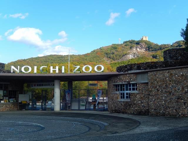 のいち動物公園(野市動物園)は高知県!ランチや入場料・夜・営業時間など