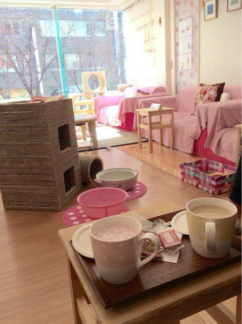 熊谷市・熊谷駅周辺カフェ!おすすめのおしゃれな店や猫カフェも紹介!