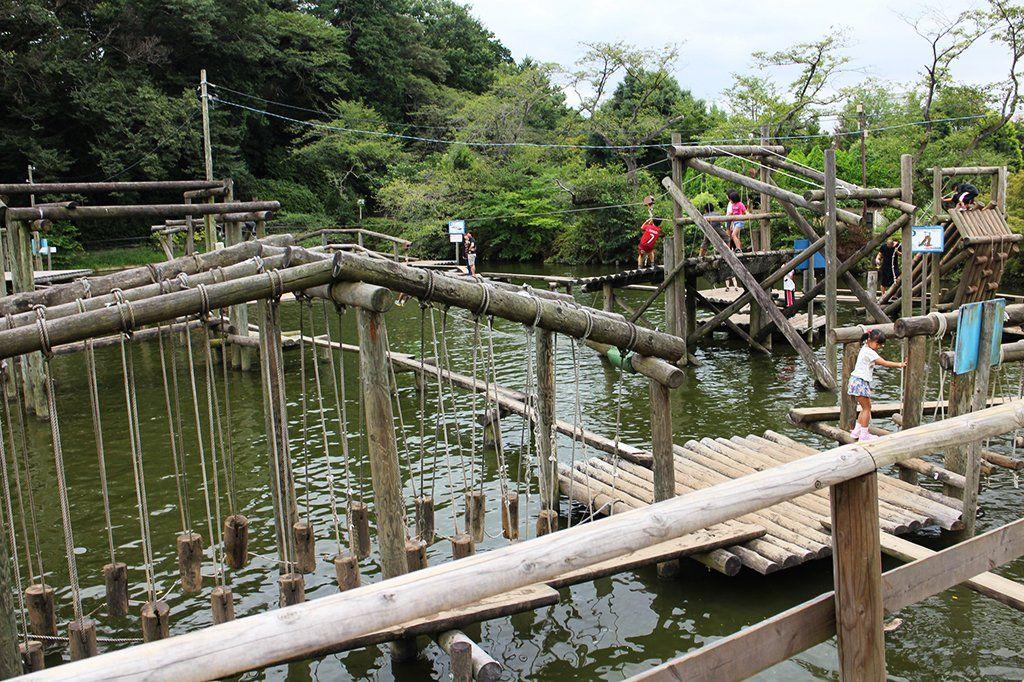 埼玉のアスレチックがある公園おすすめ10か所!子供も大人も楽しめる!