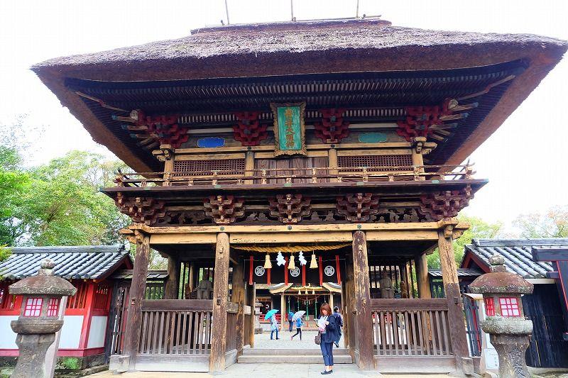 熊本の神社はパワースポット!有名所のお参りで運命を変えるご利益が!?