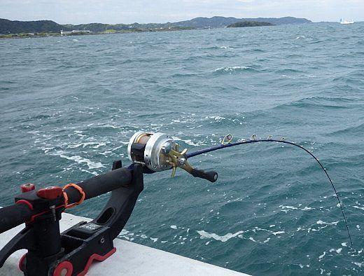 館山の釣り情報!おすすめ釣りポイントや魚種・駐車場などは?