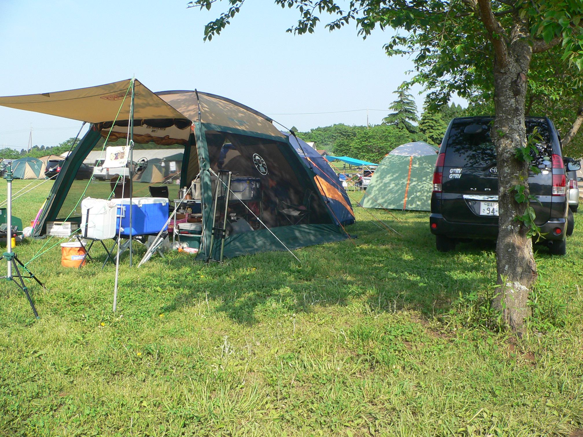 成田ゆめ牧場でキャンプを楽しもう!いちご狩りなどイベントも豊富!