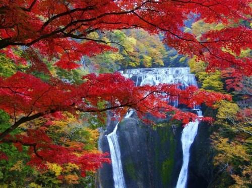茨城の紅葉スポットランキングTOP10!名所や絶景スポットをご紹介