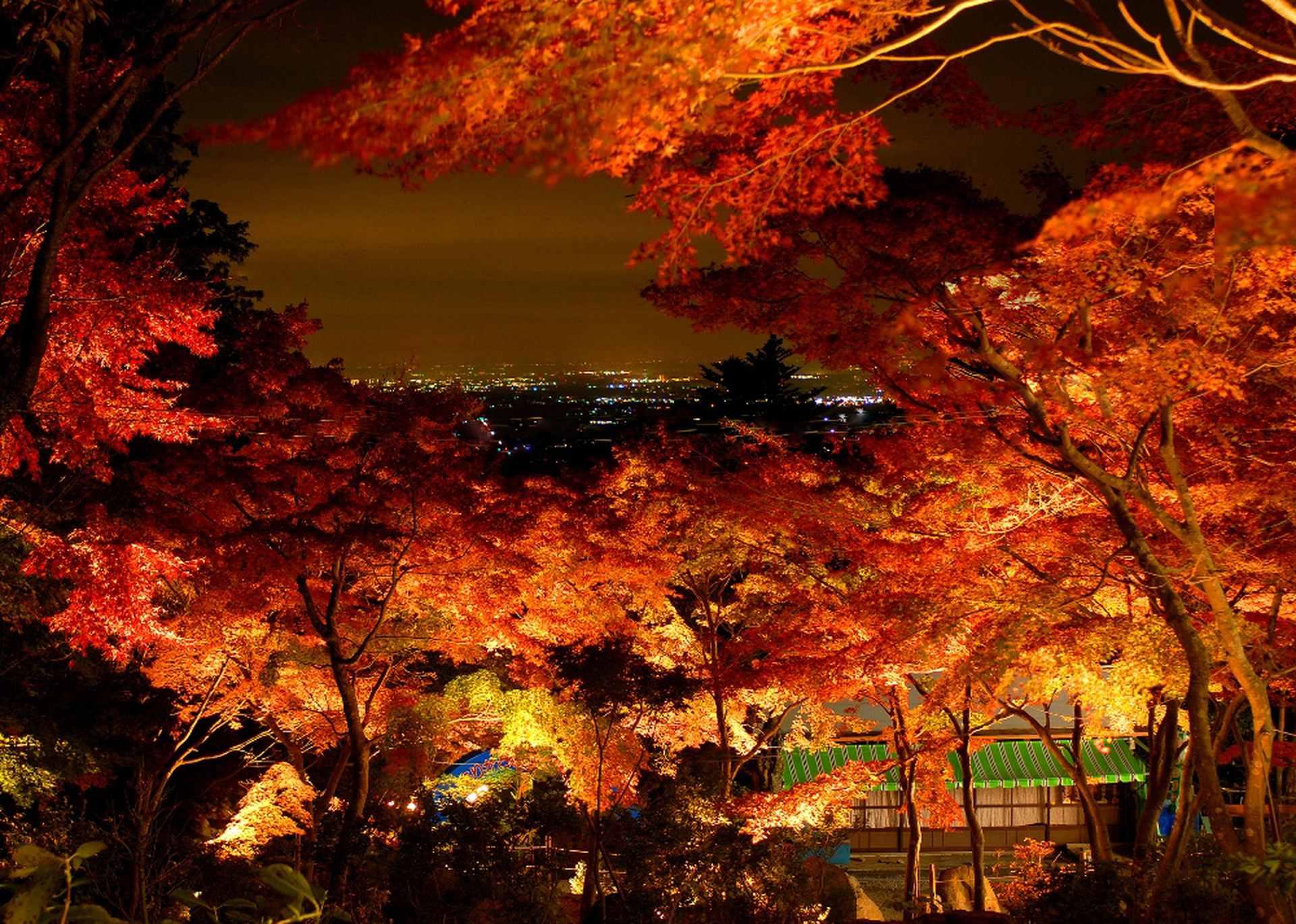 筑波山周辺の観光を楽しむには?パワースポット巡りやドライブにも!