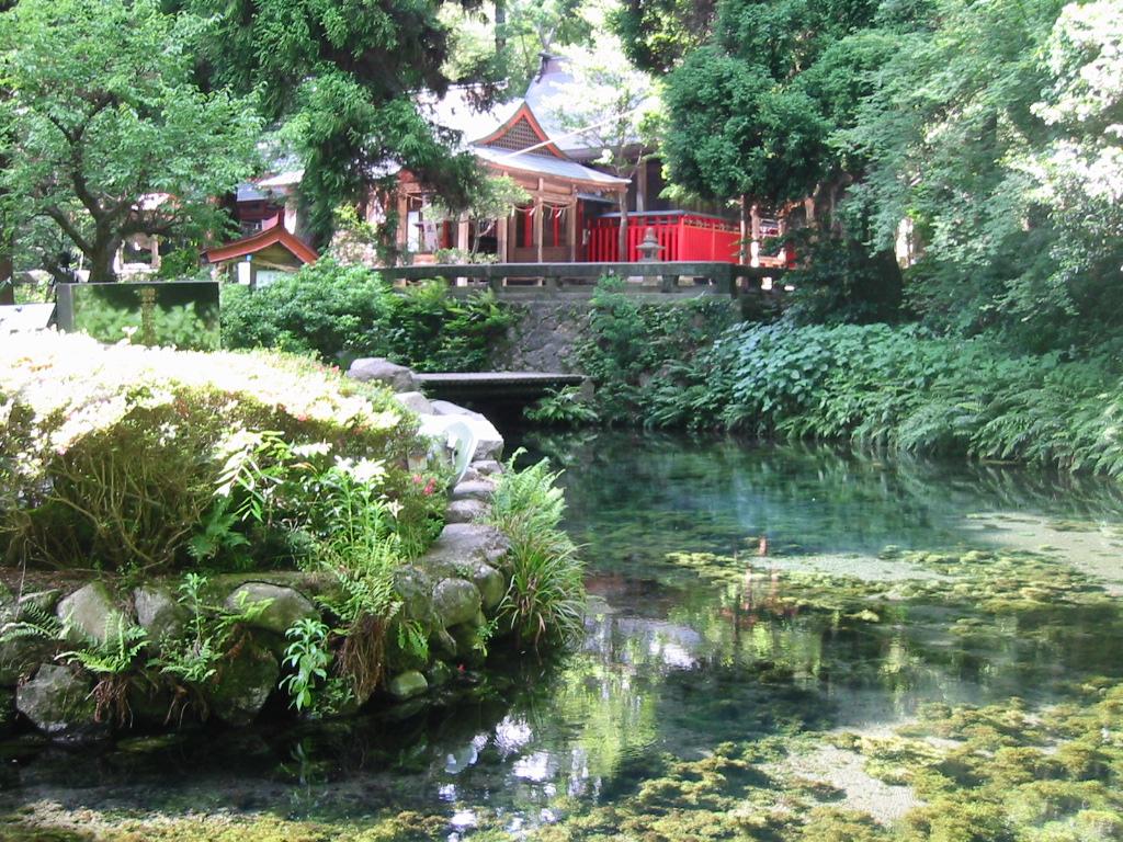 白川水源と高森湧水トンネル公園の観光を楽しむ!アクセス・駐車場は?