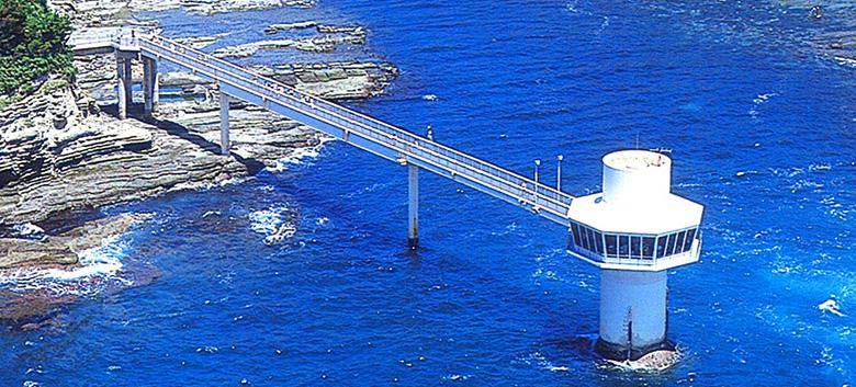 勝浦海中公園の海中展望塔から魚の観察!アクセスや料金は?