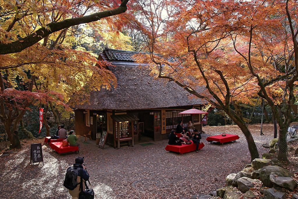 奈良市内おすすめホテル・旅館特集!格安で人気のお宿をご紹介