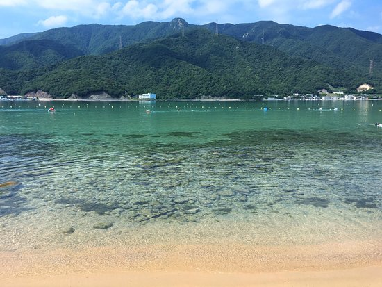 水島(福井県)がまるで楽園?夏だけ行ける無人島を徹底調査!