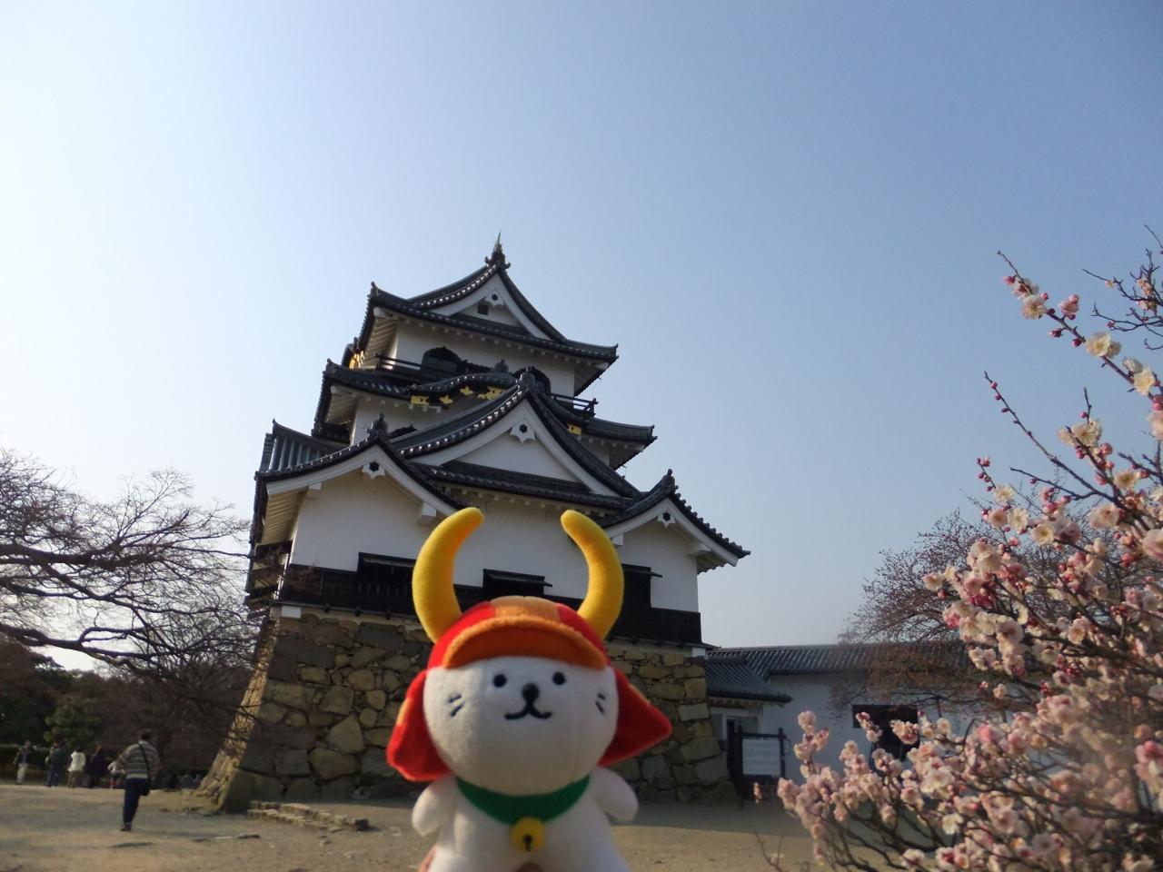 彦根城周辺・おすすめ観光スポットのご紹介!屋形船に乗るのも人気!