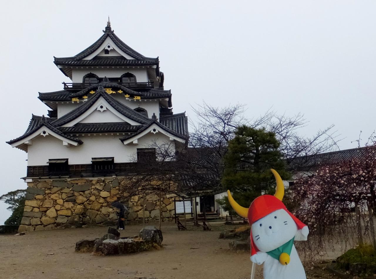 彦根城の天守閣は人気スポット!観光して歴史を学ぶ!ひこにゃんに会える?