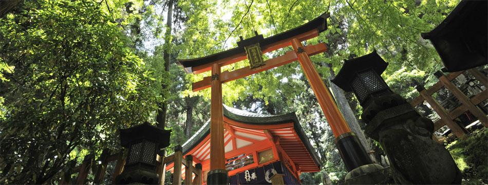 京都伏見稲荷を観光!神社の魅力や周辺のランチまでご紹介!