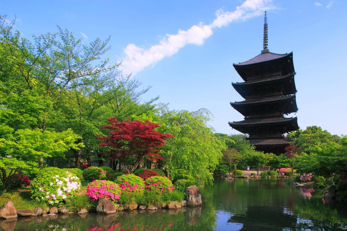 京都の東寺観光!おすすめの見どころからアクセス方法まで!