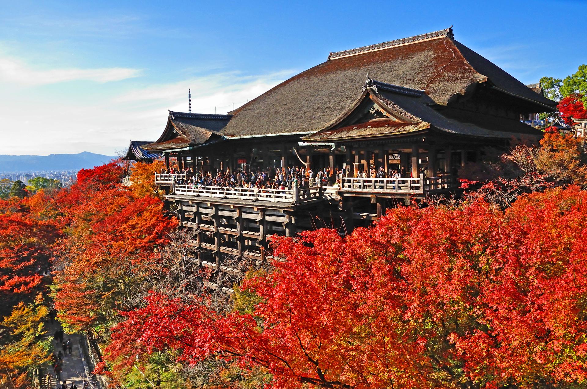 京都の寺ランキング31!パワースポットやおすすめの観光名所も