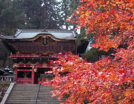 日光国立公園とは?広大な範囲に史跡・大自然!紅葉も!日本初ってなに?