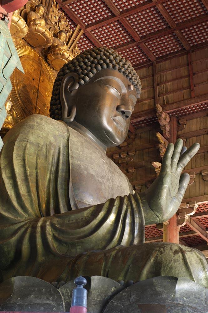 東大寺・奈良の大仏に会いに行こう!歴史・大仏の大きさ・拝観料などご紹介