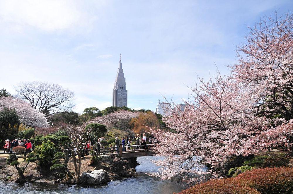 東京都内のおすすめデートスポット完全版!まったりできる場所や穴場情報も!