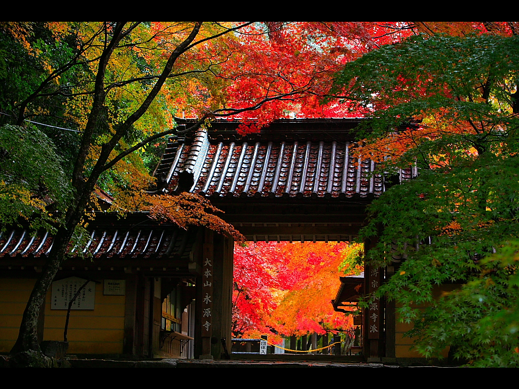 滋賀・永源寺人気観光スポットのご紹介!紅葉が美しい温泉もあり