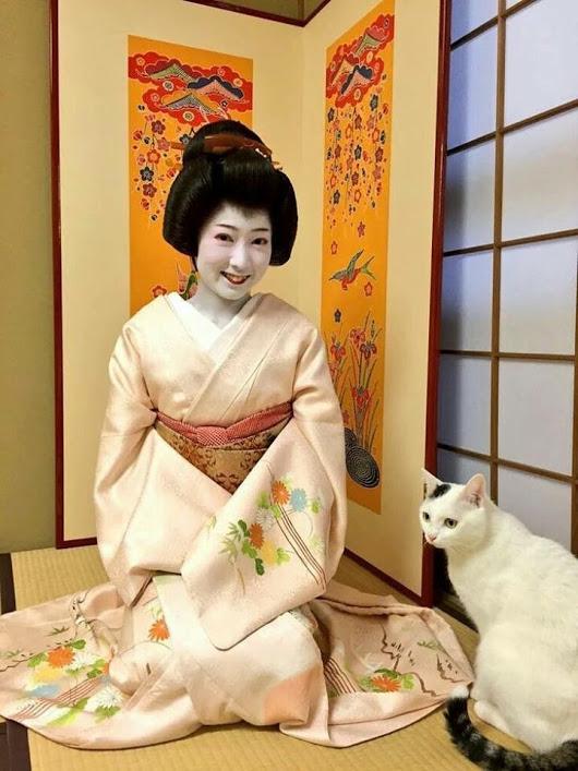 京都のうなぎ名店特集!ランチにもおすすめの人気店21選をご紹介!