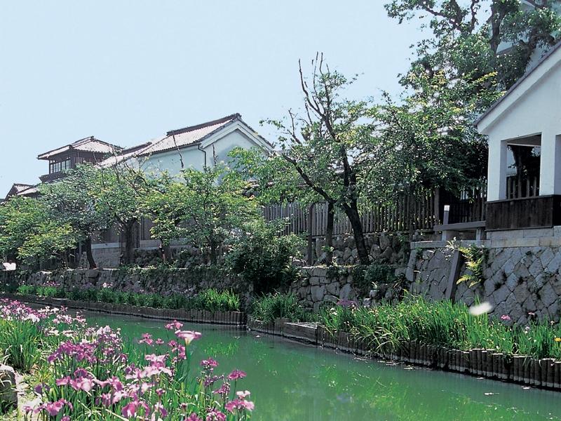 近江八幡水郷めぐり人気スポットのご紹介!おすすめコースは?周辺グルメも!