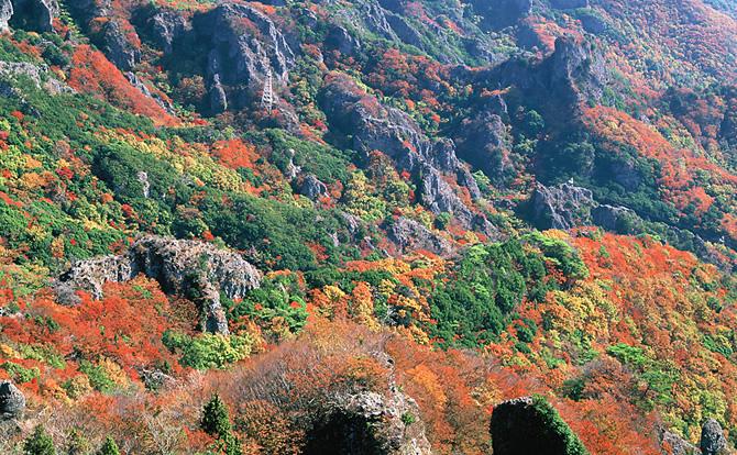 寒霞渓はロープウェイで見る紅葉が最高!子供も楽々!おすすめの楽しみ方紹介