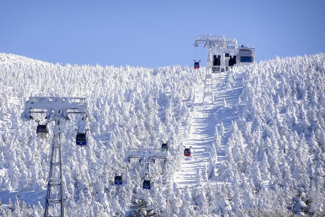 蔵王にスキーをしに行こう!ツアーはお得?レンタルや宿泊などおすすめは?