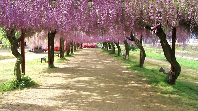岡山の公園へ行こう!遊具もアスレチックもあって子供も遊べる