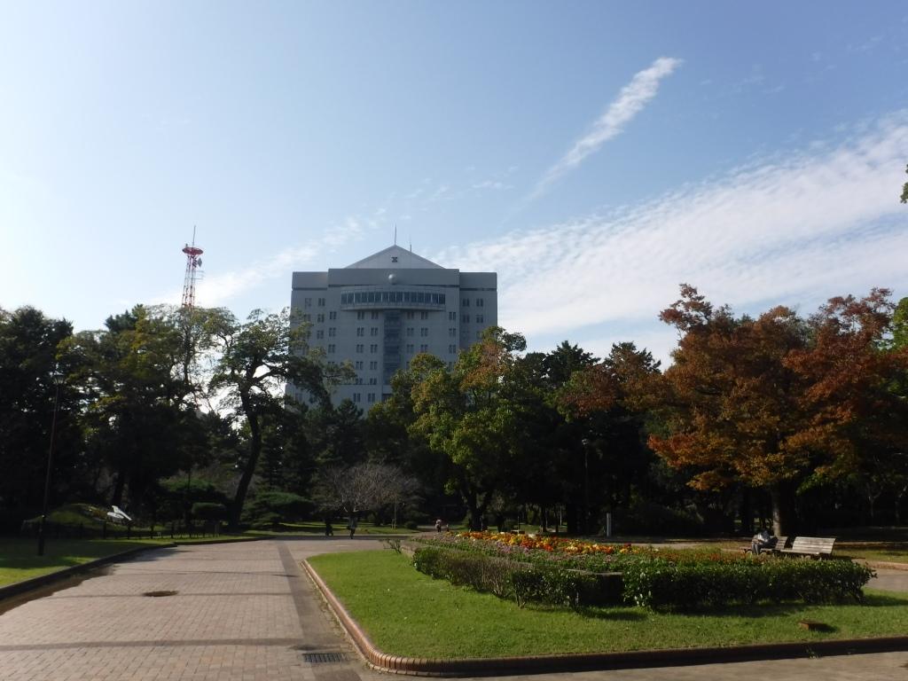 豊橋公園は遊具が豊富で子供に人気!イベントやバーベキューもおすすめ!