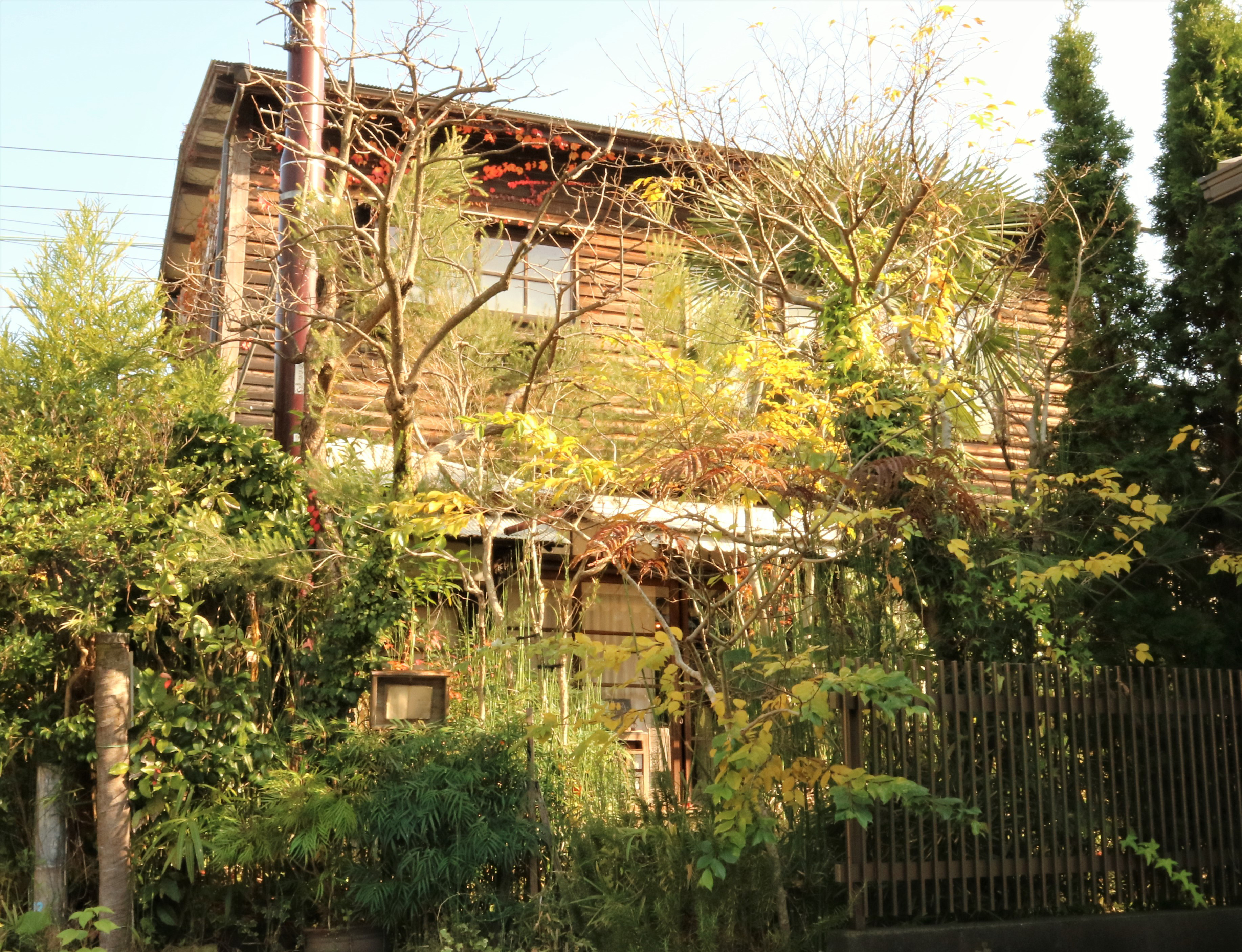 鎌倉のカフェで古民家などおしゃれなお店がたくさん!おすすめを紹介!