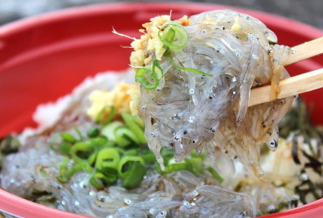 鎌倉のランチで安いのは?しらすなど海鮮丼が安く食べられる?