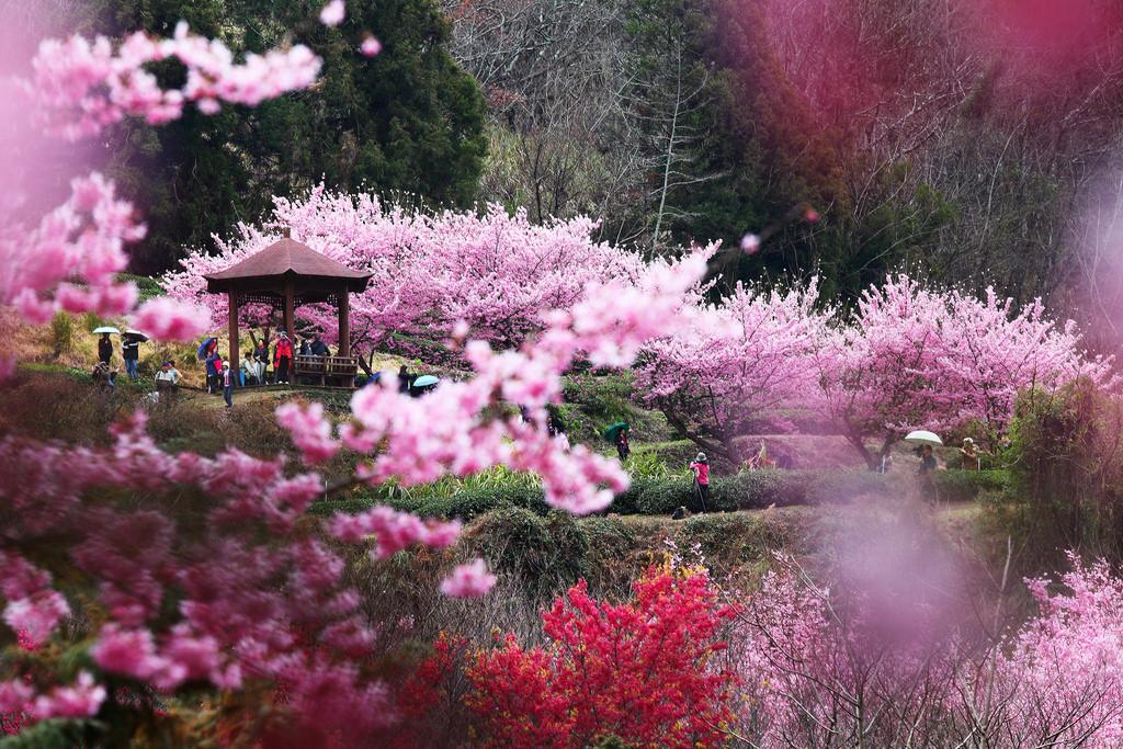苗栗市・台湾苗栗県の観光スポット!おすすめには絶景・自然に囲まれて温泉も!