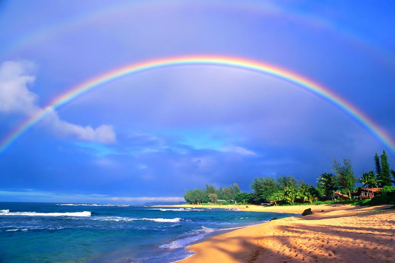 ハワイホノルル観光のおすすめスポットTOP15!グルメ情報もあり!